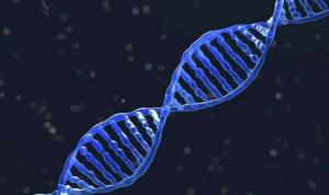 日本体检看病资讯|面对遗传疾病,日本人都做这样的体检预防